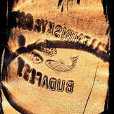 gabor-eniko-budapest-cianogram